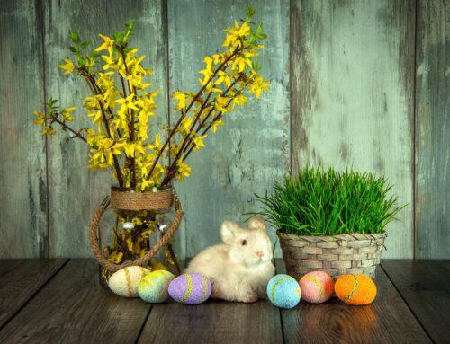 02.04.2021 r. – Życzenia Wielkanocne